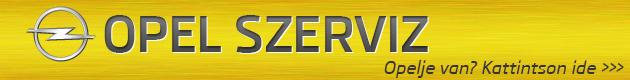 Opel szerviz